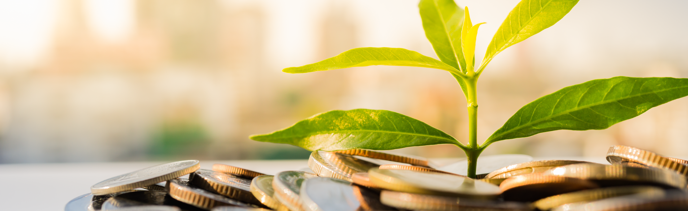 2019 Financial Regulation Conference: Sustainable Green Finance