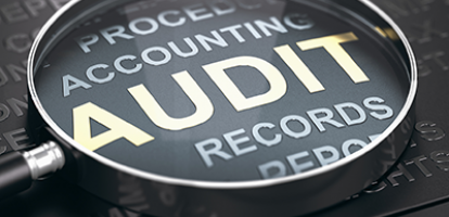Assessing the Canada Revenue Agency: Evidence on Tax Auditors' Incentives and Assessments