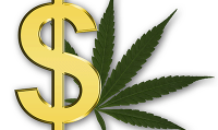 Rosalie Wyonch - Don't Overtax Our Pot Producers