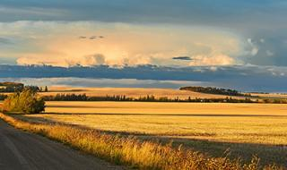 No Easy Answers: Insights into Community Well-being among First Nations